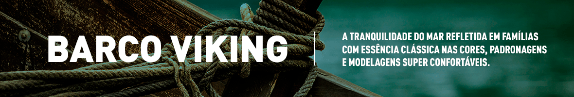 banner-barcoviking